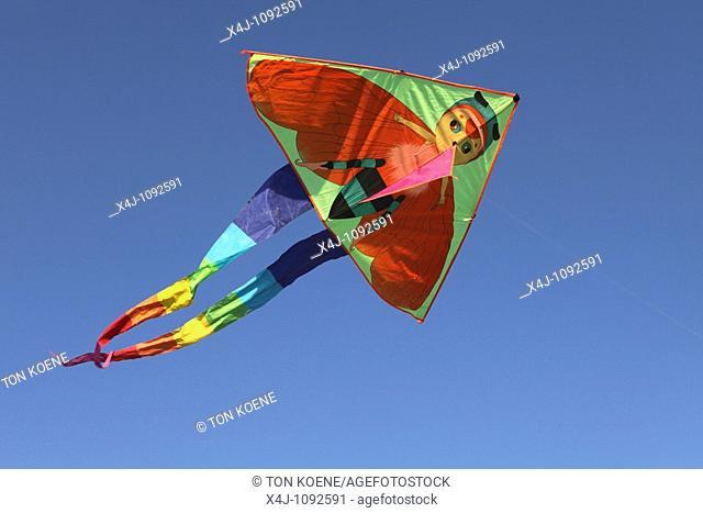 Kites are popular among kids in Kabul