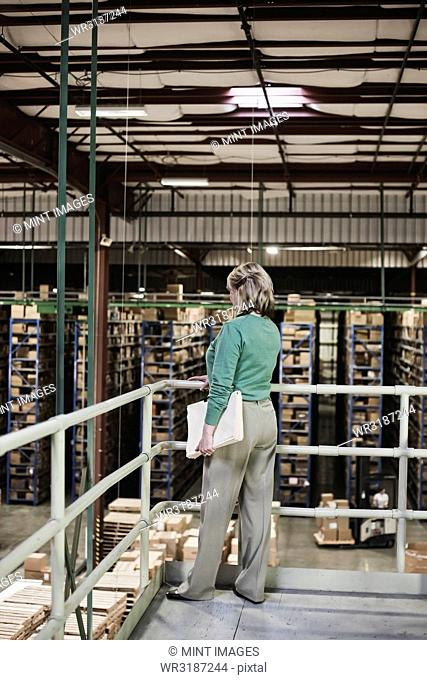 Portrait of a Caucasian female executive in a warehouse distribution facility, with a products stored in cardboard boxes on pallets and large racks
