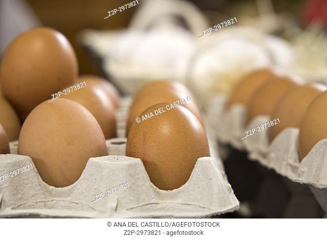 Chicken eggs in boxes, Spain