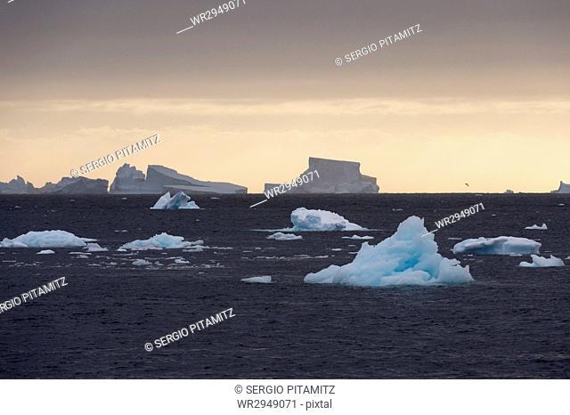 Icebergs, Lemaire Channel, Antarctica, Polar Regions