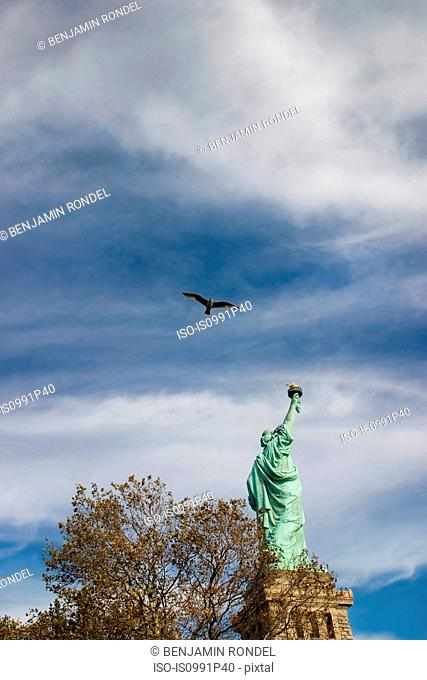 Bird flying over Statue of Liberty, New York