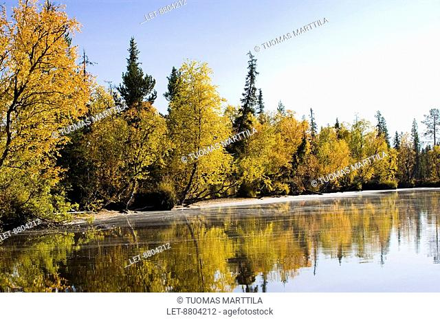 A landscape in the autumn by a lake in Lapland, Finland