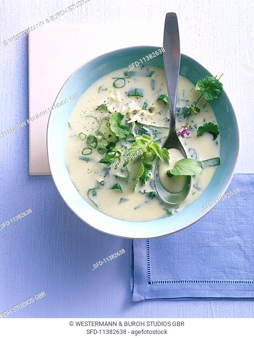 Wild herb soup with cream