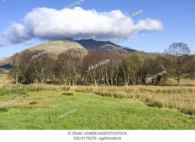 Blencathra fell from Dale Bottom in the English Lake District National Park, Cumbria, England