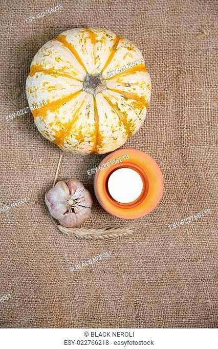 Autumn pumkin decoration. Fall Background Border