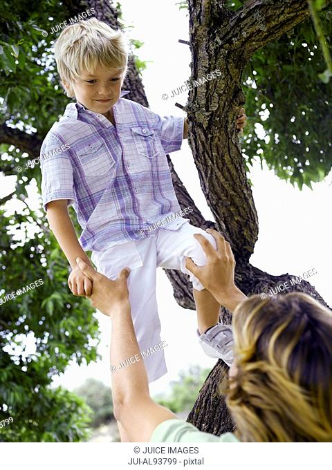 Father helping son out of tree