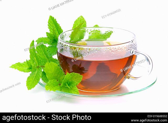 Tee Pfefferminze - tea Peppermint 04