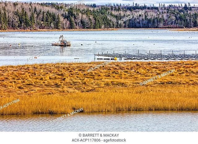 Aquaculture, Seaview, Prince Edward Island, Canada