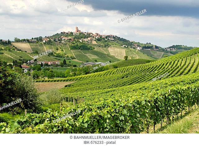 Hilly countryside between Asti and Alba Langhe Piedmont Piemonte Italy