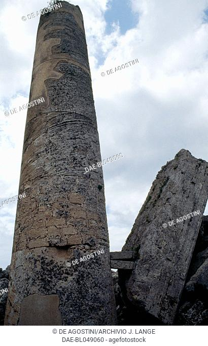 Column of the Temple F, ca 520 BC, Doric order, ancient city of Selinunte, Sicily, Italy. Greek civilisation, Magna Graecia, 6th century BC