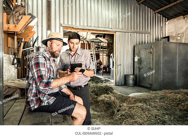 Two scientists comparing data in plant growth research centre barn