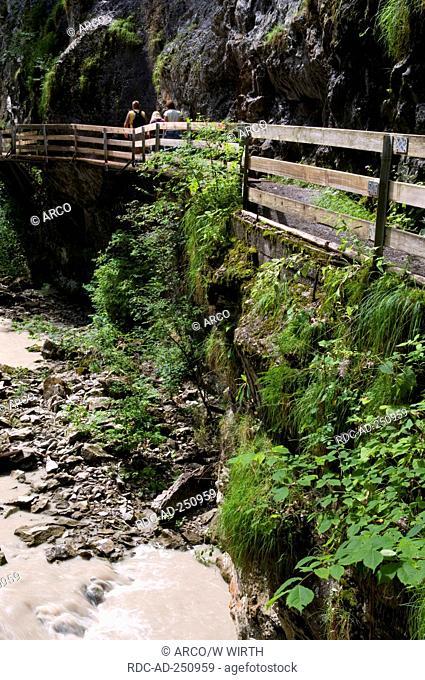 Path Rappenlochschlucht Gutle Dornbirn Voralberg Austri Gütle alps