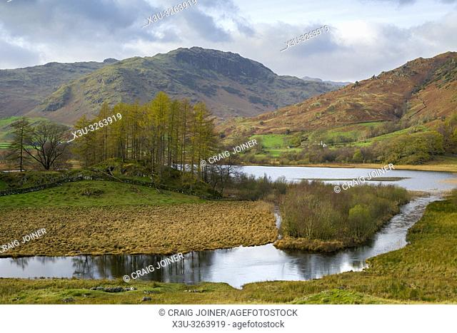Autumnal view of the River Brathay and Little Langdale Tarn in the Lake District National Park, Cumbria, England