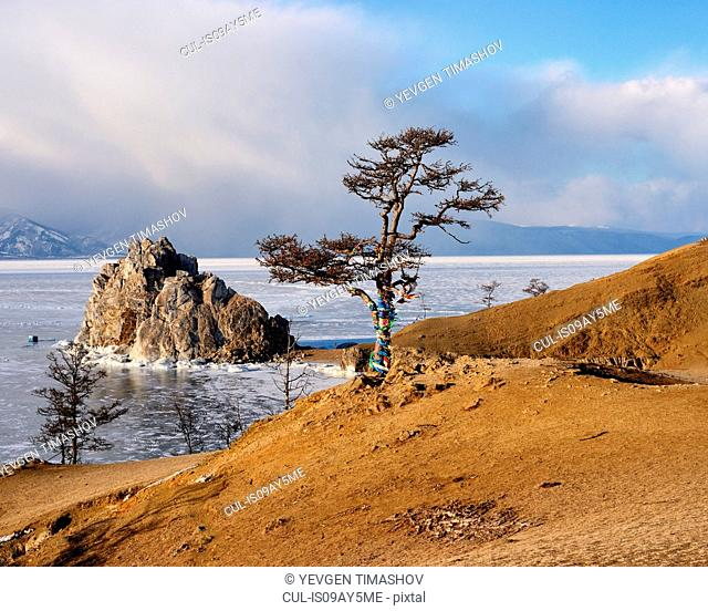 View of tree and Shamanka Rock on Burkhan Cape, Baikal Lake, Olkhon Island, Siberia, Russia
