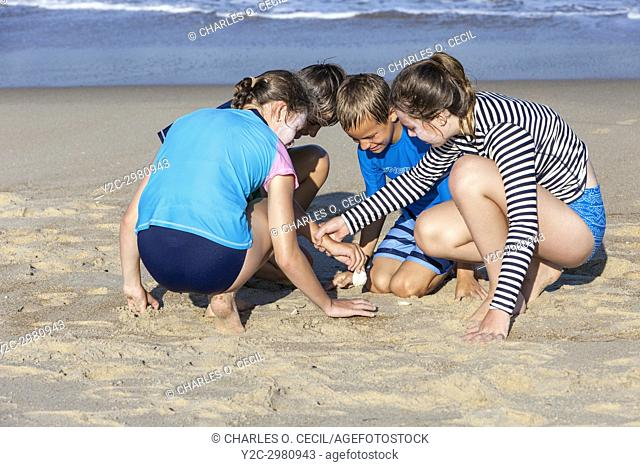Avon, Outer Banks, North Carolina, USA. Children Searching in the Sand for Seashells