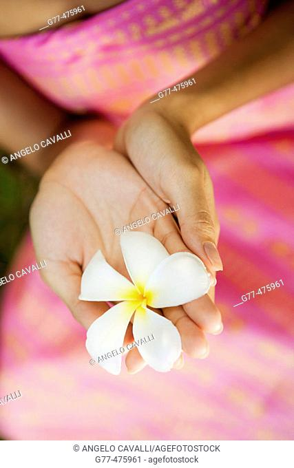 Koh Samui Island. Thai woman with frangipani flower. Thailand