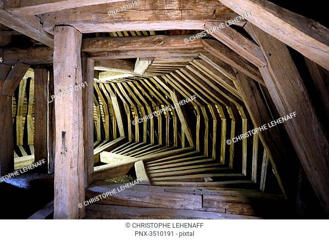 France, Burgundy, Yonne. Castle of Saint Fargeau. The frame