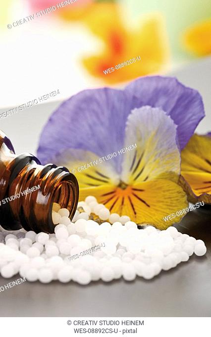 Medicinal flask with pills in front of Horned violet Viola cornuta, close-up