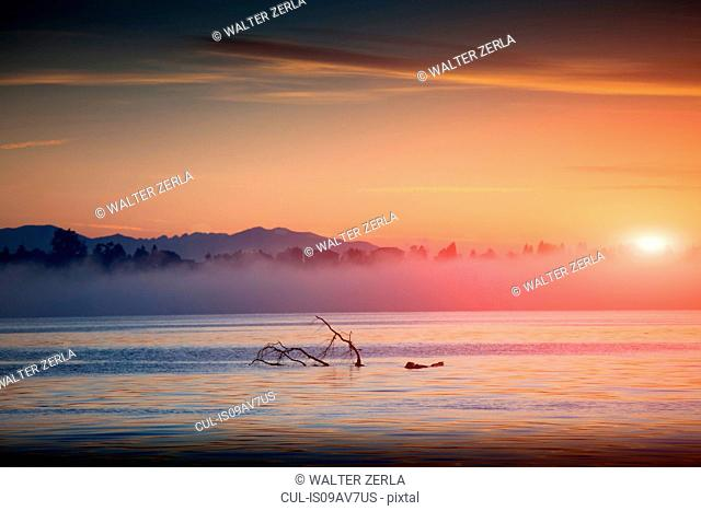 Mist on water at sunset, Lake Maggiore, Piedmont, Lombardy, Italy