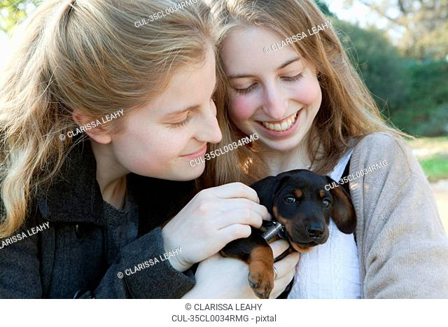 Teenage girls petting puppy outdoors