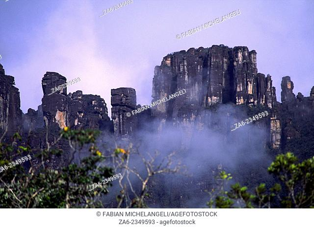 Giant Rock towers on the summit of Auyantepuy making a rock labyrinth. Canaima National Park, Bolivar state, Southern Venezuela