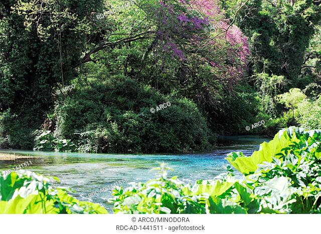 River Bistrica, Albania