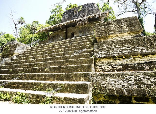 Plaza of the Seven Temples, Mundo Perdido (Lost World) Complex, Tikal, Guatemala, Central America