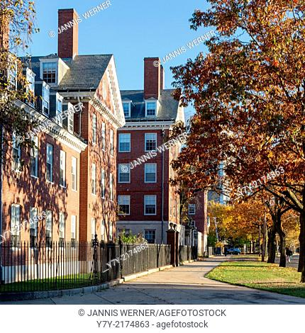 Dorm buildings lie in the afternoon sun on Harvard University Campus in Cambridge, MA, USA in Fall