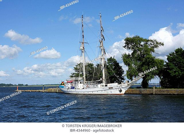 Sailboat Greif in Wieck harbor, Greifswald, Mecklenburg-Western Pomerania, Germany