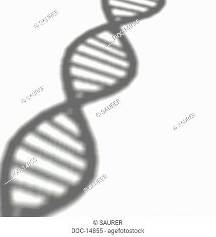 Desoxyribonukleinsaeure DNS double helix