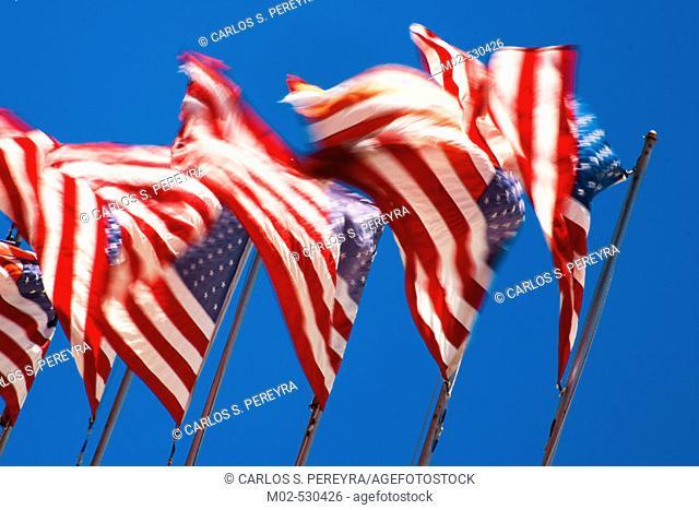 Flags. San Francisco. USA