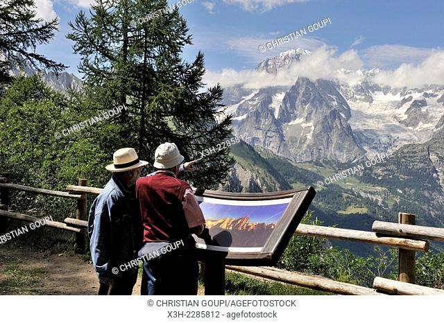 view over the Mont Blanc massif from the belvedere of Arpy, near La Thuile, Aosta Valley, Italy, Europe