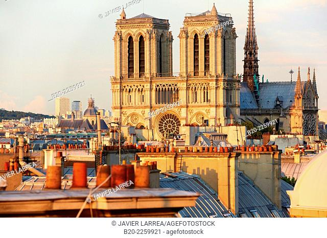 Parisian rooftops and chimneys. Notre Dame Cathedral. Paris. France