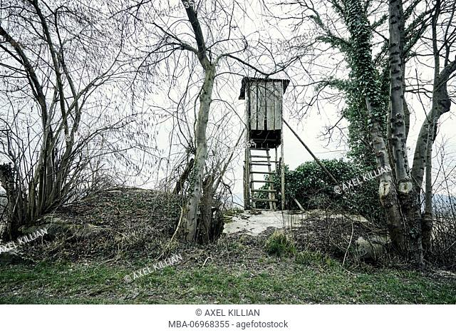 old high seat, abandoned, weathered, trees