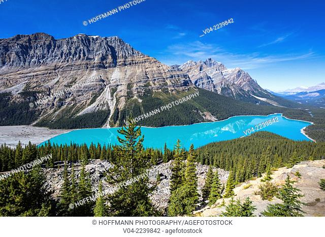Beautiful Peyto Lake in the Banff National Park, Alberta, Canada