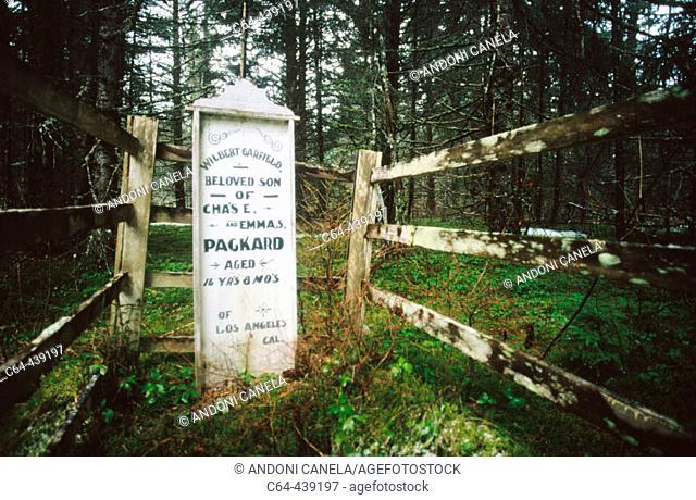 Cementery. Alaska