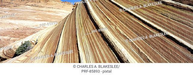 The Wave Navajo Sandstone Formation Vermilion Cliffs Wilderness AZ