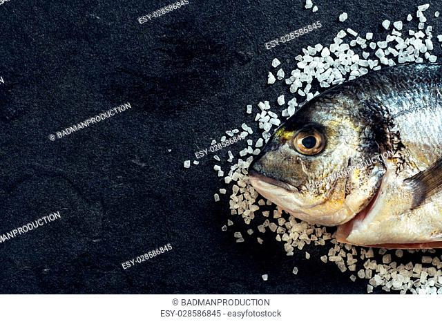 Dorada fish head on salt with blank space on the left side