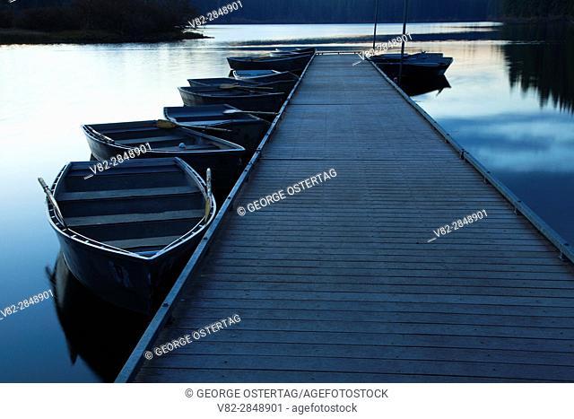 Clear Lake Resort boat dock at dawn, Willamette National Forest, Oregon
