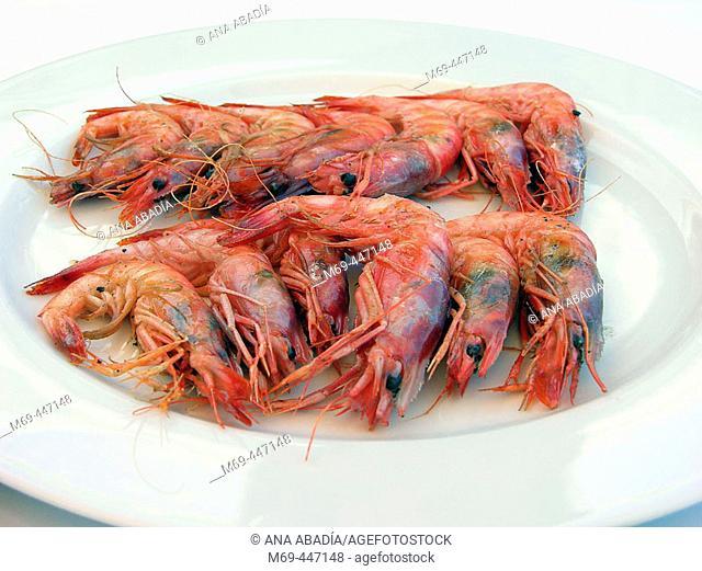 Grilled prawns. Mallorca. Balearic Islands. Spain