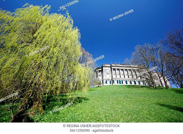 Weeping Willow Tree salix alba var  and palace in park, springtime Germany