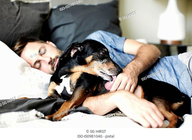 Young man asleep on bed with dog