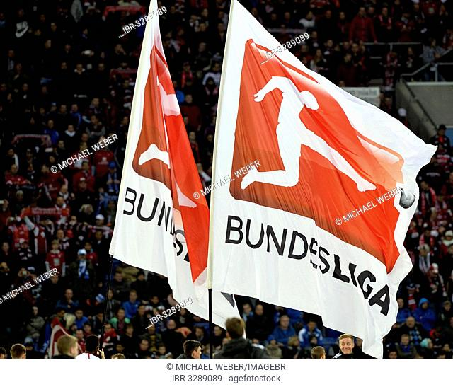 Bundesliga flags flying in the Wirsol Rhein-Neckar Arena