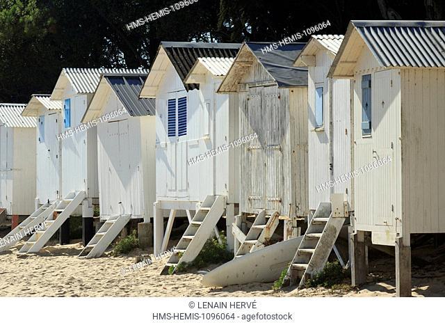 France, Vendee, Ile de Noirmoutier, Noirmoutier en l'Ile, the sea in the Bois de la Chaise, the beach des Dames and beach cabins