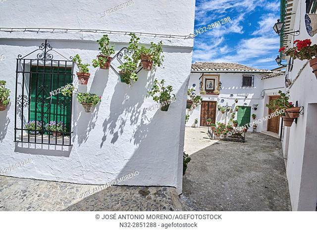 Flowerpots in Barrio de la Villa (old quarter), Priego de Cordoba, Sierra de la Subbetica, Route of the Caliphate, Cordoba province, Andalusia, Spain