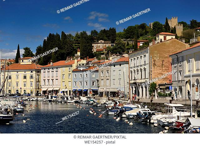 Pastel houses on Cankar Quay along the inner harbor of Piran Slovenia with moored boats and crenellated Town Walls on hilltop