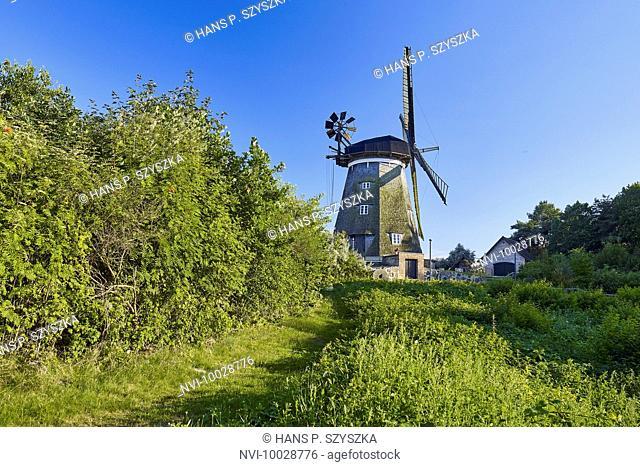 Smock mill near Benz in Achterland, Usedom, Mecklenburg Western Pomerania, Germany