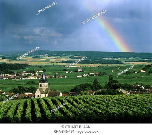 Champagne vineyards and rainbow, Ville-Dommange, near Reims, Champagne, France, Europe