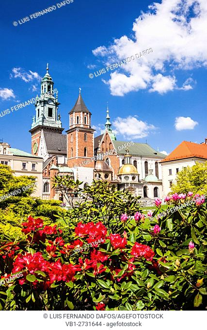 Poland, Krakow. Wawel Cathedral with colorful flowers in foreground. Father Karol Wojtyla, later to become Pope John Paul II