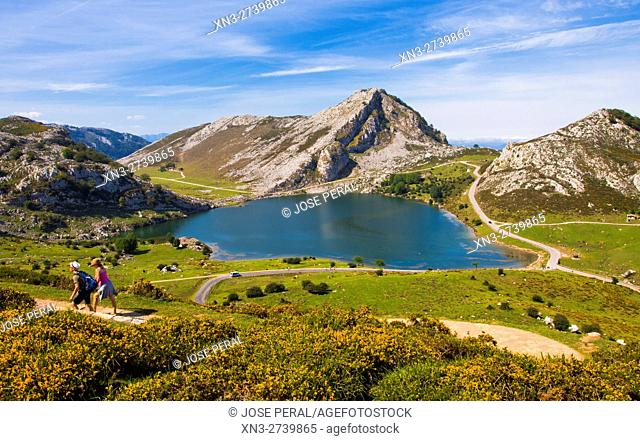 Enol Lake, The Lakes of Covadonga, Cangas de Onis Council, Peaks of Europe, Picos de Europa National Park, Asturias, Spain, Europe